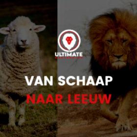 Van schaap naar leeuw